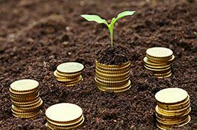 Farm/Ag Loans